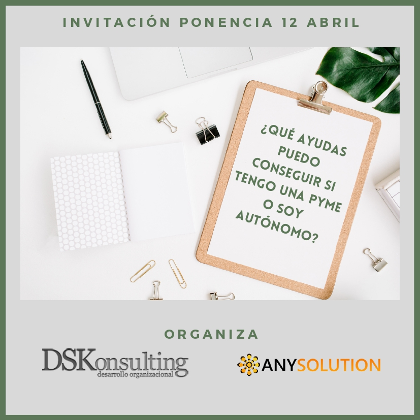 DSKONSULTING Y ANYSOLUTION